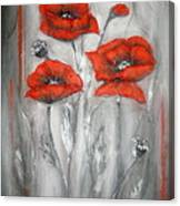 Red Poppies In Silver Dream Canvas Print