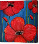 Red Poppies On Blue Canvas Print