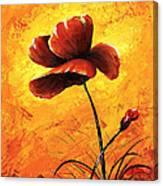 Red Poppy 012 Canvas Print