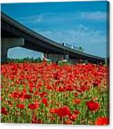 Red Poppy Field Near Highway Road Canvas Print