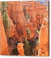 Red Rocks - Bryce Canyon Canvas Print