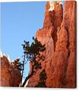 Red Rocks Of Bryce Canyon  Canvas Print