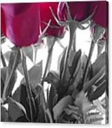 Red Rose Color Block Canvas Print