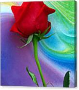 Red Rose Delight Canvas Print