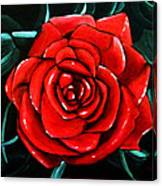 Red Rose In Black And White Canvas Print