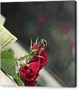 Red Roses And Visitor Canvas Print