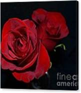 Red Roses For A Blue Lady Canvas Print