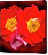 Red Roses Heart Canvas Print