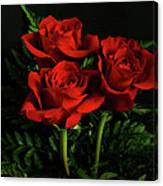 Red Roses Canvas Print