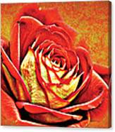 Red Rosey Canvas Print