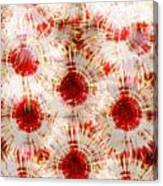 Red Rubies Canvas Print