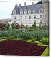 Red Salad And Cabbage Garden - Chateau Villandry Canvas Print