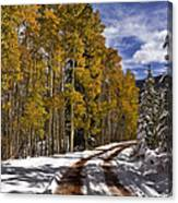 Red Sandstone Road In October Canvas Print