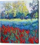 Red Season Canvas Print
