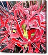 Red Spider Lily Flower Painting Canvas Print