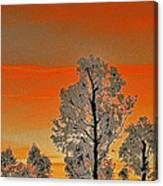Red Sunset With Trees Canvas Print
