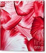 Red Swirls Background Canvas Print