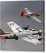 Red Tail Escort Canvas Print