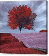 Red Tree In A Field Canvas Print