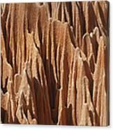 red Tsingy Madagascar 5 Canvas Print