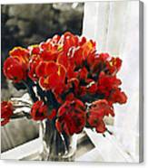 Red Tulips In Window Canvas Print