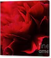 Red Velvet Canvas Print