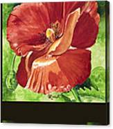 Red Vibrations Poppy Canvas Print