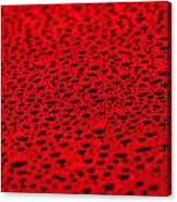 Red Water Drops On Water-repellent Surface Canvas Print