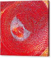 Red Whirlpool Canvas Print