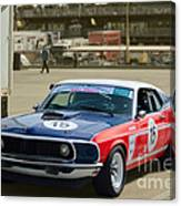 Red White And Blue Mustang Canvas Print