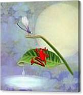 Redfrog And The Dragonfly Canvas Print