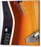 Redish-brown Guitar Canvas Print