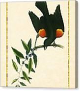 Redwing Blackbird Vertical Canvas Print