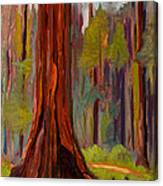 Redwood Giant Canvas Print