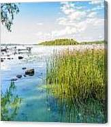 Reeds And Dnieper River Canvas Print
