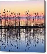 Reeds Reflected In Water At Dusk Ile Canvas Print
