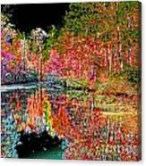 Reedy Creek Nc 3 Canvas Print