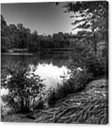 Reedy Creek Park Canvas Print