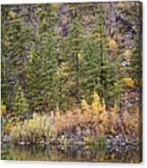 Reflect Autumn Canvas Print