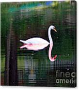 Reflect Yourself Canvas Print