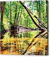 Reflected Forests Canvas Print