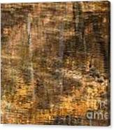 Reflected Gold Canvas Print