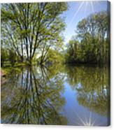 Reflected Star Canvas Print