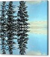 Reflecting Evergreens In Winter Canvas Print
