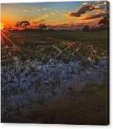 Reflecting On A Duba Plains Sunset Canvas Print