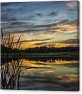 Reflection At Sunset With Cattails Canvas Print