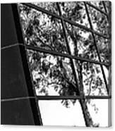 Mirror Image Palm Springs Canvas Print