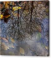 Reflection In A Puddle Canvas Print