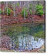 Reflection In The Lake Canvas Print