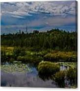 Reflection In The Swamp Canvas Print